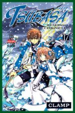 capa de Tsubasa #17